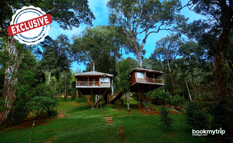 Bookmytripholidays | True Nature Delight Munnar | Budget Tours tour packages