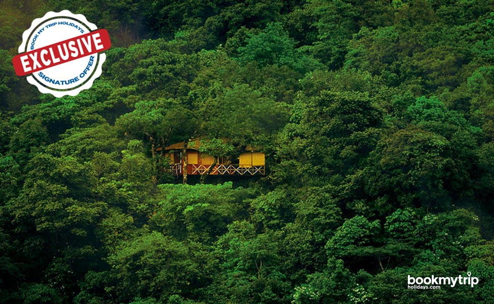 Bookmytripholidays | Enticing Wayanad Holiday | Luxury tour packages