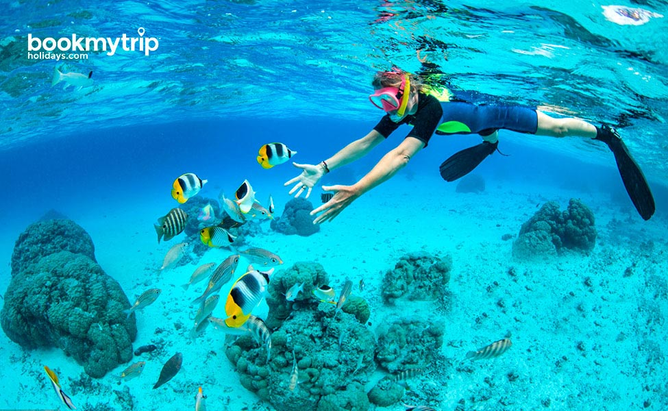 Bookmytripholidays | Snorkeling Holiday at Lakshadweep | Beach Holiday tour packages