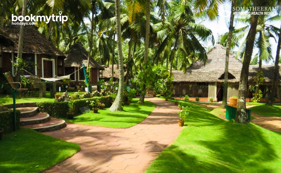 Bookmytripholidays | Trim to Healthy Life with Ayurveda | Ayurveda tour packages