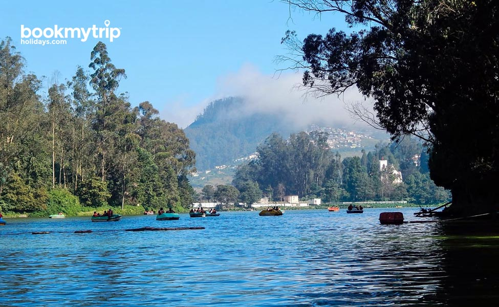 Bookmytripholidays | Ooty Nature Retreat | Budget Tours tour packages
