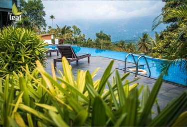 Bookmytripholidays | The Leaf,Munnar  | Best Accommodation packages