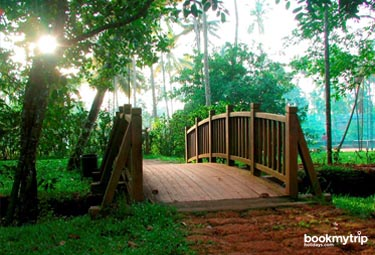 Bookmytripholidays | Marari Beach Resort,Alappuzha  | Best Accommodation packages