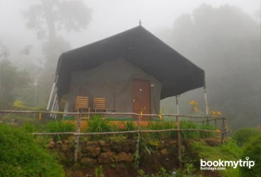 Bookmytripholidays | Nature Zone,Munnar  | Best Accommodation packages